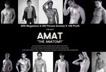 AMAT THE ANATOMY