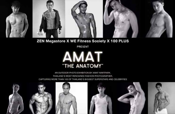 AMAT THE ANATOMY