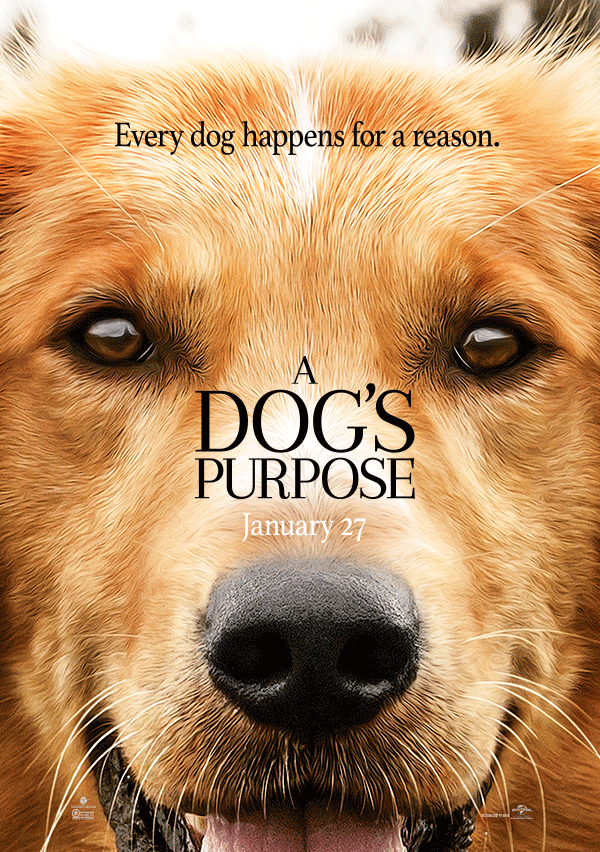 A Dog's Purpose ซับไทย