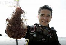 ปู – ขวัญ – อเล็กซ์ จิตอาสา เก็บขยะใต้ทะเลและบนชายหาดภูเก็ต โครงการ Upcycling The Oceans Thailand