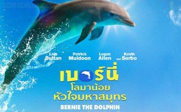 Bernie the Dolphin โลมาน้อยหัวใจมหาสมุทร