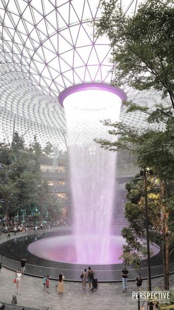 """""""เปอร์สเปกทิฟ"""" ร่วมกับ ปตท.จัดโครงการ """"40 ปี ปตท. PLANT TOGETHER"""" พาบินลัดฟ้าชมประเทศที่มีพื้นที่สีเขียวมากที่สุดในโลก"""