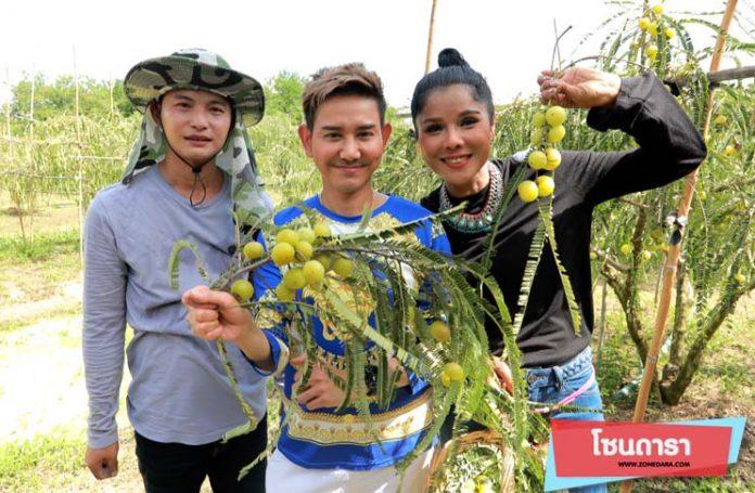 รำลึกความหลัง เจเน็ตเขียว ชวนกินมะขามป้อม ในรายการ